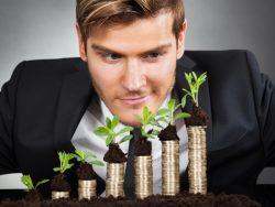 Un homme d'affaire qui regarde des tas de pièces où pousse une plante.