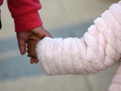 Vulgarisation du fonctionnement d'une fiducie familiale