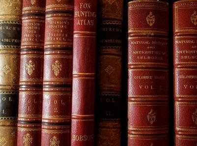 Fiscalité: quelles sources consulter pour approfondir ses connaissances