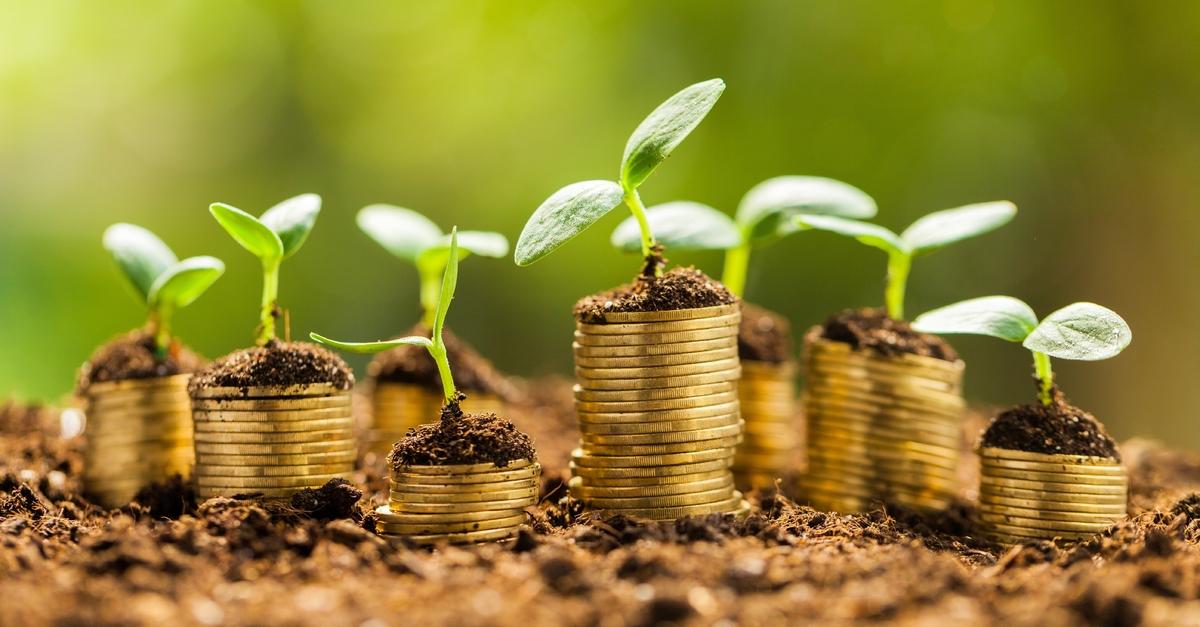 RBC Gestion mondiale d'actifs lance le Fonds d'actions mondiales sans combustibles fossiles