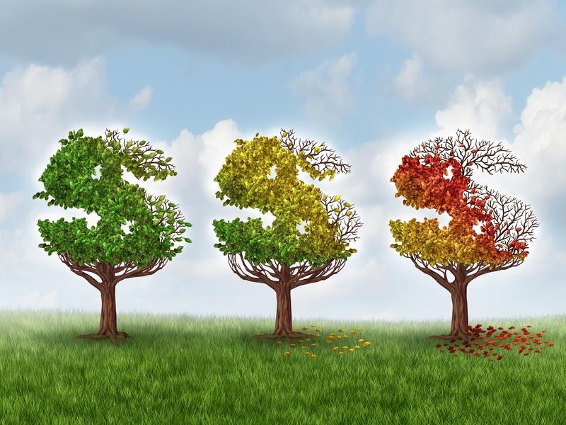 Trois arbres dont le feuillage d'automne forment des dollars