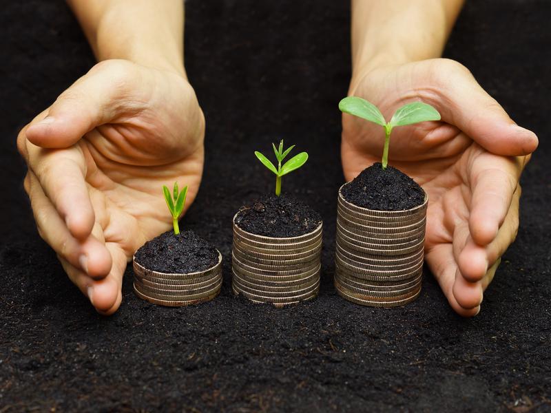 Deux mains protégeant des piles d'argent sur lesquelles poussent des petites plantes.