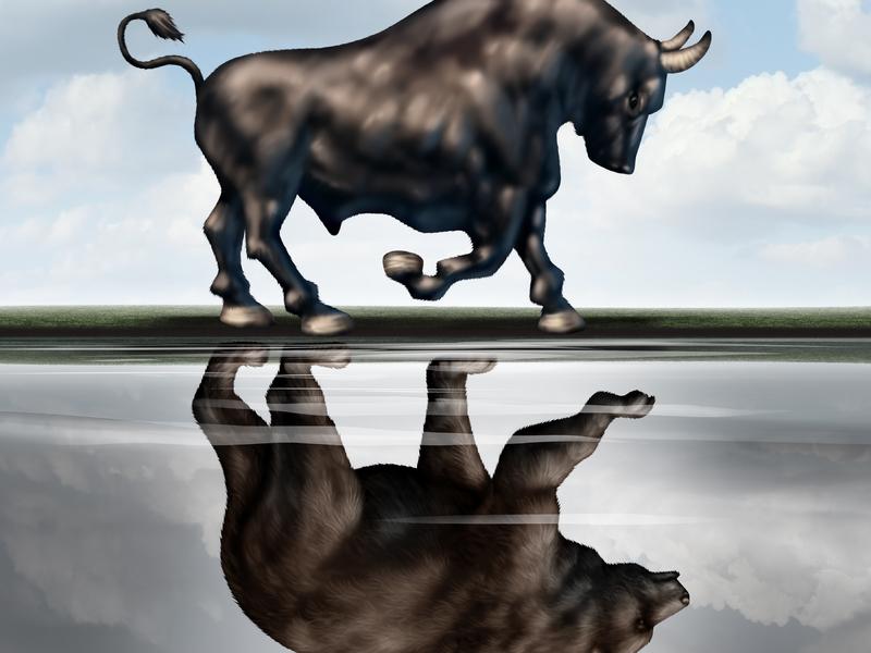 Un taureau marchant sur le bord de l'eau. Son reflet est un ours.