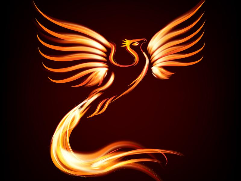 Un dessin de phoenix sur un fond noir.