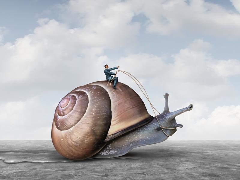 Un homme d'affaire à cheval sur un escargot.