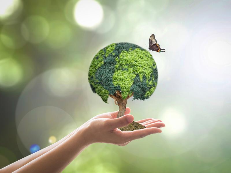 Une femme tenant un petit arbre dans la main dont les feuilles représentent le globe terrestre. Un papillon est vers l'arbre.