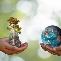 Deux mains en coup tenant un bocal d'argent avec un arbre dedans, face à deux autres mains en coup tenant la Terre.
