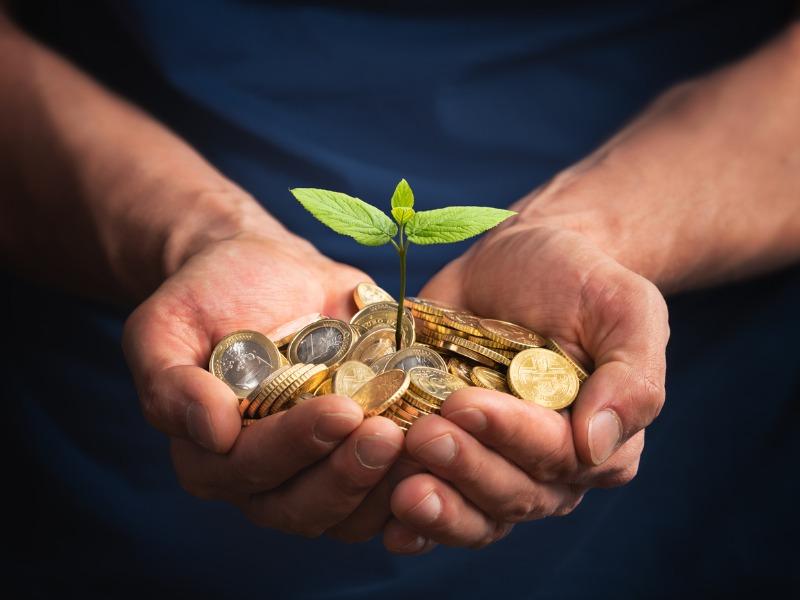 Une plante enterrée dans des pièces tenue par deux mains.